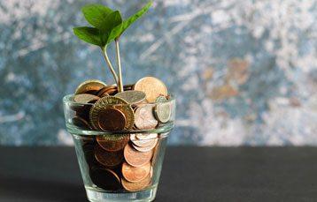 Equity Crowdfunding Website Development