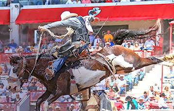 Rodeo Events Management Marketplace